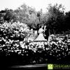 fotografo-matrimonio-forli-cesena_EN_0710