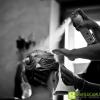 fotografo-matrimonio-spiaggia-rimini-san-marino_JV_0161