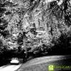 fotografo-matrimonio-pesaro-urbino_046-MM.jpg