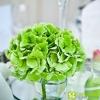 fotografo-matrimonio-forlì-cesena-grand-hotel-cesenatico_PC_0587